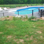 cindys-pool-area-before-pic