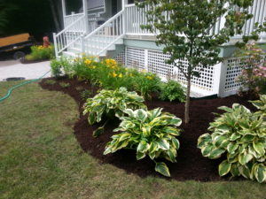 Landscape design and installation, Wolfeboro, Meredith, Gilford and Laconia